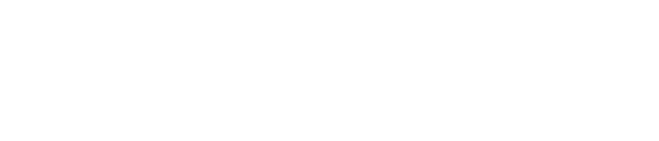Risk Sciences International website banner - white only