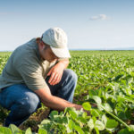 RSI is committed to risk in agriculture